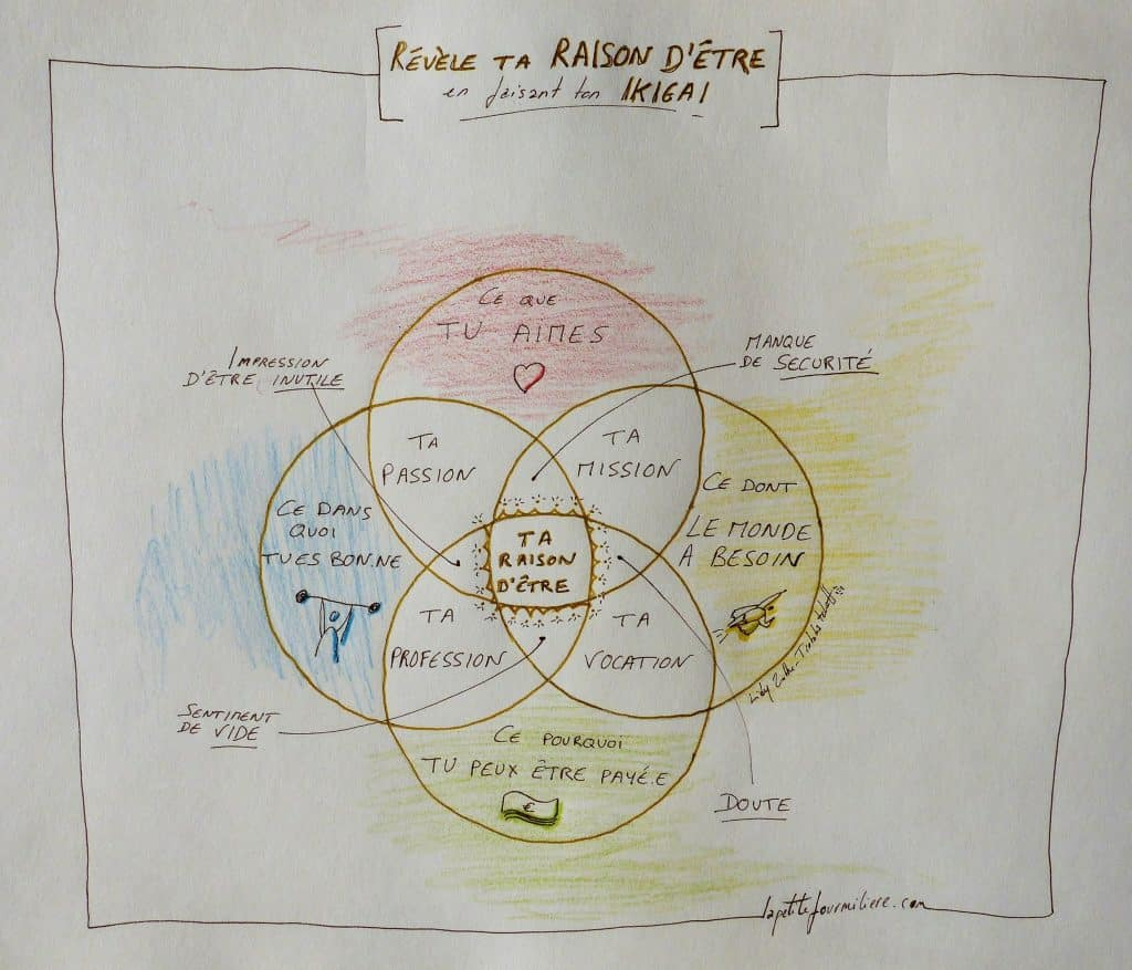 schéma de l'ikigai