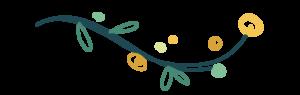 lidy-separateur